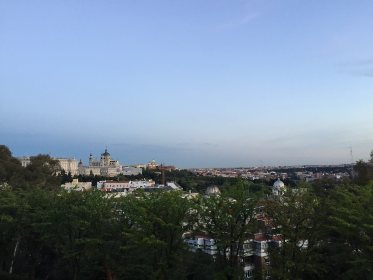 View of the Royal Palace and Catedral from Temple de Debod